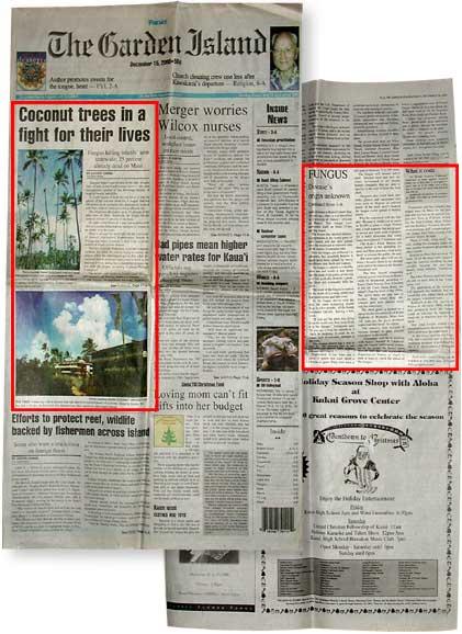 Garden Isle Newspaper